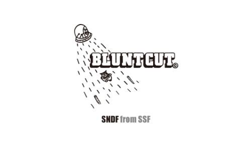 blunt-cut